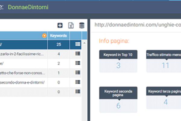 pagine-monitorate-seozoom