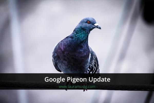 google-pigeon-update